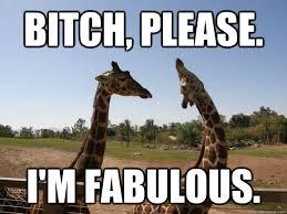 I Am Fabulous Meme - bitch please i am fabulous funny giraffe meme image