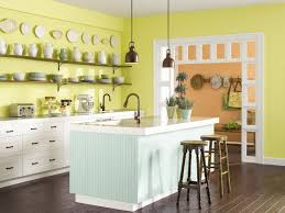 sensible style pet friendly kitchens jamie gold kitchen and