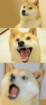 Meme Generator Doge - bad pun doge blank template imgflip