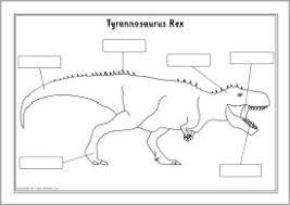21 best dinosaur unit images on pinterest dinosaurs dinosaur