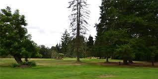 blue heron golf course