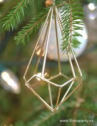 geometric ornaments rainforest islands ferry