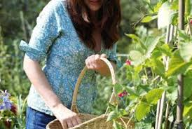 How To Grow Green Beans On A Trellis How To Grow Kentucky Wonder Pole Beans Home Guides Sf Gate