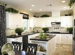 above kitchen cabinet ideas plants on top of kitchen cabinets home design ideas
