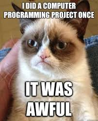 Computer Programmer Meme - programmers need a perfect pet and we know the best one missmeowni
