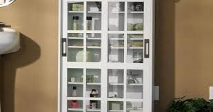 Kitchen Cabinets In Jacksonville Fl Door Kitchen Cabinet Glass Doors Only Wonderful Door Glass