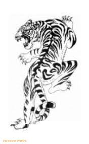 collection of 25 black and white tiger on ankle