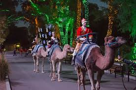 phoenix zoo lights prices phoenix zoo hours best zoo in the world 2018