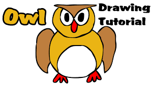 drawing tutorial how to draw an cartoon owl step by step easy