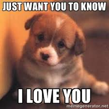 Love You Memes - just want you know i love you memes meme pinterest memes