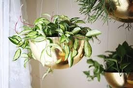 modern hanging planters best modern hanging planters indoor outdoor our top 10 cluburb