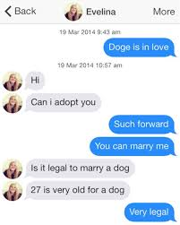 Funniest Doge Meme - lonely doge takes to tinder conversations much funny wow heavy