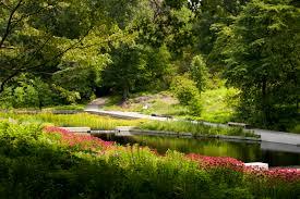 native plant garden design patio stones paths and native plants u