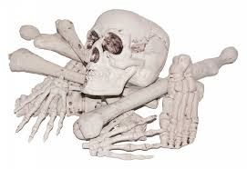 Halloween Skeleton Cut Out by Skeletons Skulls And Bones Props All Nightmare Factory Costumes