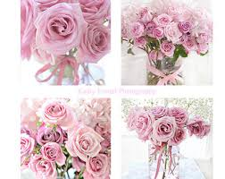Shabby Chic Rose by Roses Photography Shabby Chic Decor Soft Pink Roses