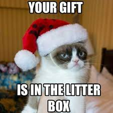 Gift Meme - your gift is in the litter box meme posted by clubmanhq cats in