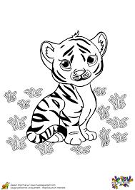 a colorier un bébé tigre qui a l u0027air tout triste sarah u0027s