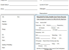 Sheet Templates The Nursing Brain Sheet Database 33 Report Sheet