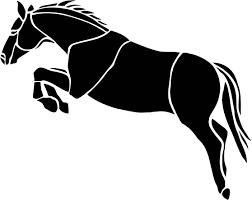 ferrari horse vs mustang horse ferrari horse png horse ferrari png paokplay info
