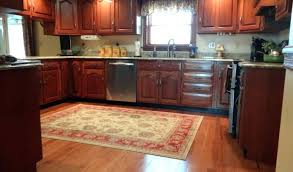 Kitchen Area Rug Kitchen Area Rugs Washable Extraordinary Kitchen Area Rug