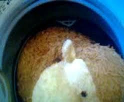 bon coin cuisine uip x240 l6m jpg