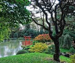traveling to the most beautiful botanical gardens in the world