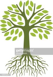 simple tree illustration vector getty images