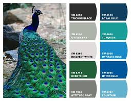 1895 best paint colors i like images on pinterest colors color
