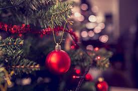 christmas tree pictures royalty free christmas tree pictures images and stock photos istock