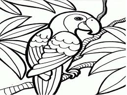 cool parrot coloring 17 333