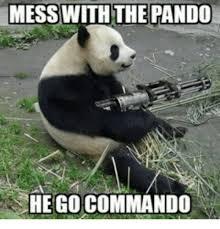 Angry Koala Meme - search angry koala bears memes on me me