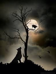 wolf and the moon spaces places and beings
