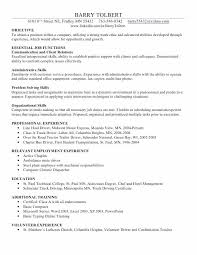 resume exle for it professional how to describe excel skills on resume megakravmaga