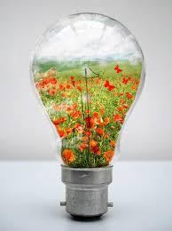Flower Light Bulbs - 35 outstanding photo manipulation designs based on light bulbs