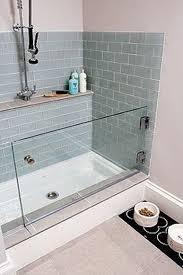 Bathtub In A Shower Bathing Mini Pigs Is It Necessary Mini Pig Info