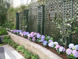 Small Walled Garden Ideas Tips To Add Drama To Your Walls
