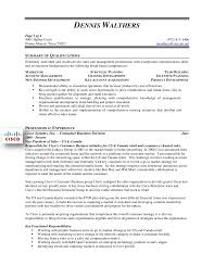 It Sales Resume Sample by Dennis Walthers Vp Sales Resume