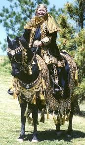 Halloween Costumes Horse 20 Arabian Horse Costume Ideas Egyptian