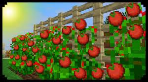 minecraft how to make tomato plants
