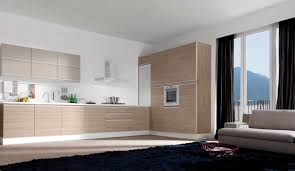 modern l shaped kitchen designs home