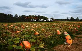 halloween desktop wallpaper halloween fall wallpapers group 65