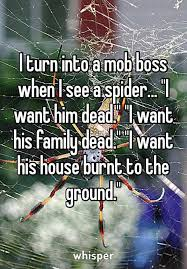 I Tried Killing A Spider - i turn into a mob boss when i see a spider funny pictures
