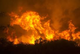Wildfire Cali by Explosive Wildfires Burn Deep Into California Wine Country The
