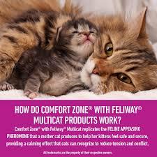 amazon com comfort zone multicat diffuser kit for cat calming