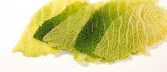 feuille de cuisine la feuille de chou une ressource en cuisine cuisinons les legumes