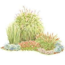 colorful front yard garden plans garden planning grasses and
