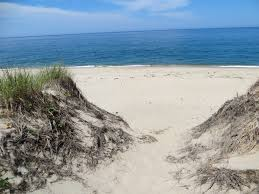 things i love about provincetown dune walk happy valley news hour