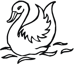 free birds coloring pages stork