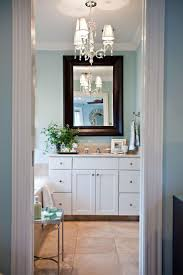 Small Bathroom Paint Colors by 63 Best Sherwin Williams Rainwashed Images On Pinterest Wall