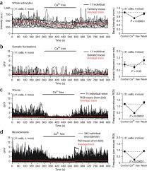 ca2 signaling astrocytes ip3r2 mice brain slices
